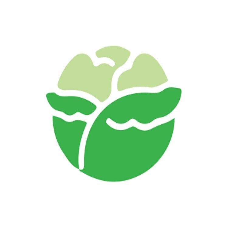 lettuce-logo