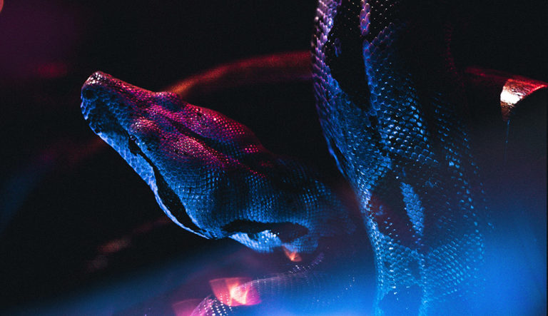 meilleurs-outils-python